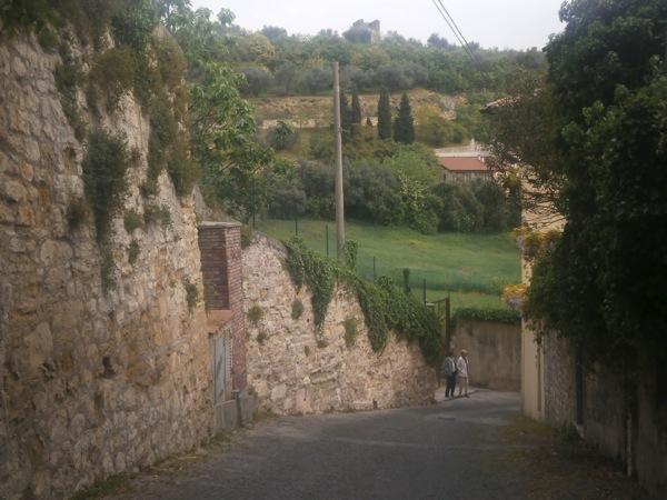 Hill Walk Verona