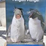 Penguin Jamie